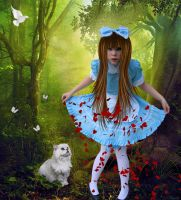 Alice in Wonderland by tinca2