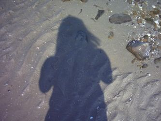 Shadows in the Sand by daskaea