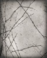 Grunge Texture 23 by amptone-stock