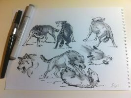 Wolves by alempe