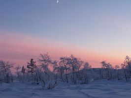 Winter in Lappland 3 by IGhengisKhanI