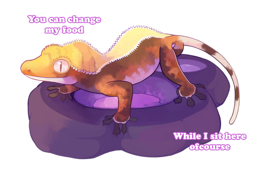 When I try to feed my Crested Gecko by HERthatDRAWS