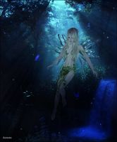Fairy Forest by Seinendre