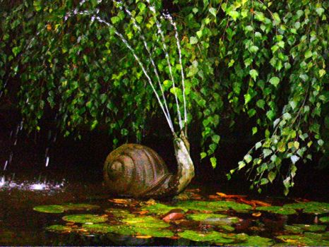 water snail by talinum