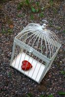 heart cage by Hongatar-stock