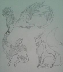 the wolves by Dream-Yaoi