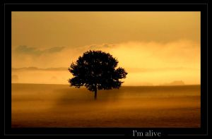I'm alive by Hocusfocus55