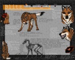 Blitz Character Reference by Blitz32