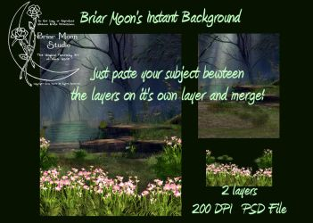Forest Pond 2 Layer PSD BG by briarmoon-stock