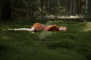 1\6 into the woods by QuartzHDR