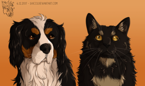Dog and special cat by Saiccu