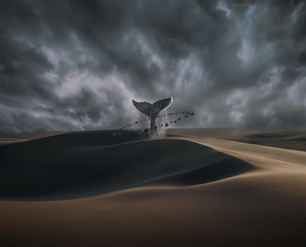 A hole in the Desert by A7medNasser