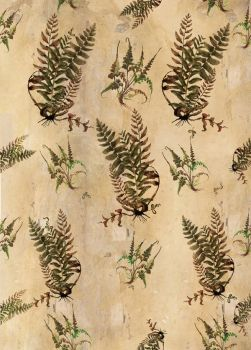 Fern wallpaper by paperdull