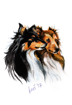 The Rough Collies by lariel-istime