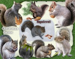 Squirrel-Christmas theme by roula33