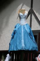 Renaissance Costume 1 by sd-stock