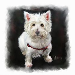 West-highland-white-terrier-michael-greenaway by brisingr29