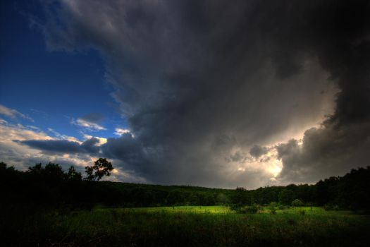 Before The Storm by borda