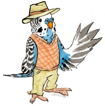 Dapper Budgie by anoneemoose