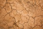 cracked earth texture by CO2PHOTO-stock