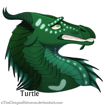 WoF H-a-D Day 9 - Turtle by xTheDragonRebornx