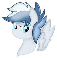 [C] Blizzard Blast Headshot by Bubbly-Storm
