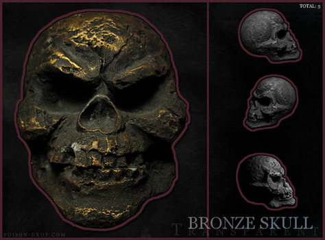 Transparent Bronze Skulls by poisondropstock