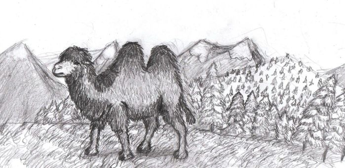 Prehistoric Russia: Steppe camel by AnonymousLlama428