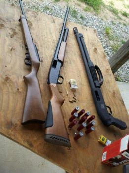 ruger 22 rifle and mossberg shotgun  by shadowhunter295