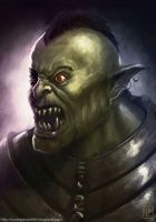 Mad orc by Luk999