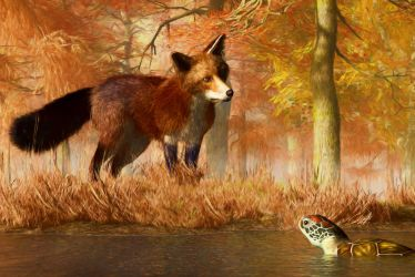 The  Fox and the Turtle by deskridge