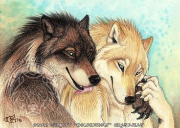 Timber and Staten by Goldenwolf