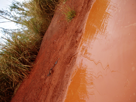 red dirt puddle by x-rated-trashy