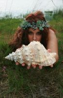 Shell 08 by MarjoleinART-Stock