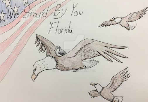 For Florida by Lunari37