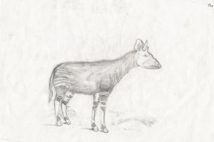The Okapi by fullhex