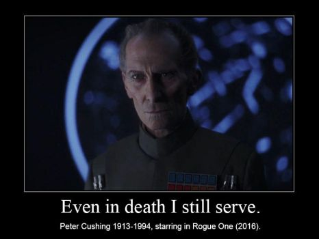 Even in death I still serve by nicedino