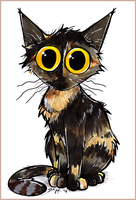 Bo the tortie cat by Loony-Madness