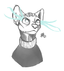 Sphinx cats are cool by QuirkyBaconroni