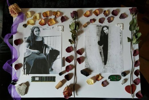 Collage For Heather by LyciaStorm