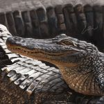 A is for Alligator - painting by Griffin-Fire