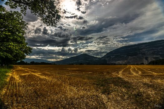 Saleve and its fields by Rikitza