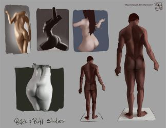 Back and Butt Studies by CatCouch