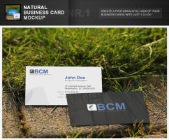 Natural Business Card Mockup 1 by h3design