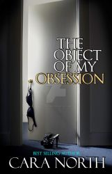 The Object of my obsession by StellaPrice