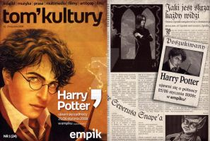 Deathly Hallows Promo Material by ellaine