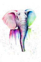 Watercolor Elephant by Homunculi92
