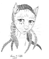 Unamed-cat-character by CopperSphinx
