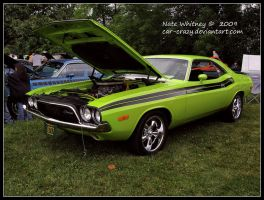 Green with Envy by Car-Crazy