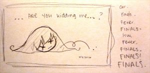 Day 348: areyoukiddingme? by shortpinay